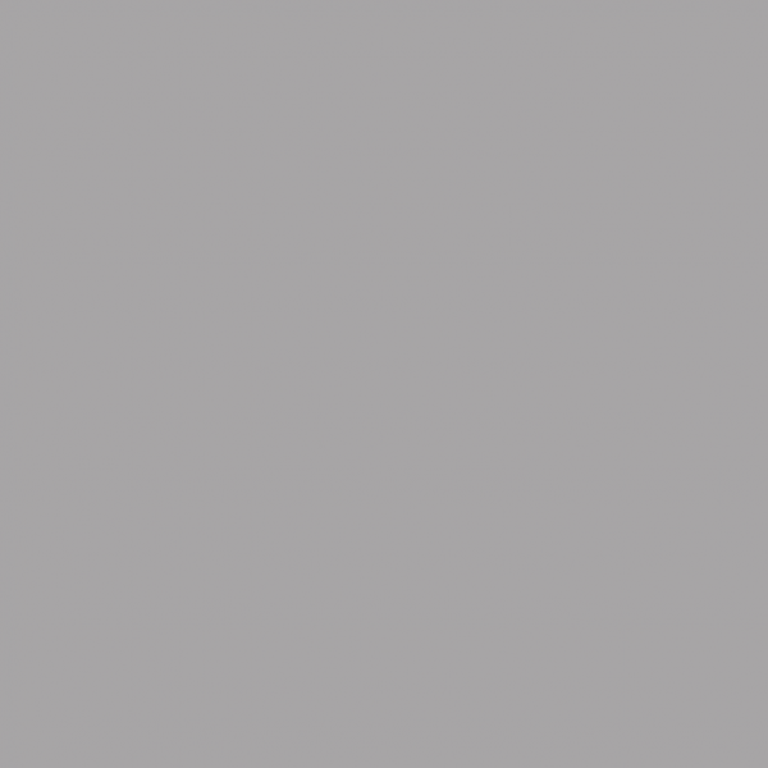 TS Grey #140